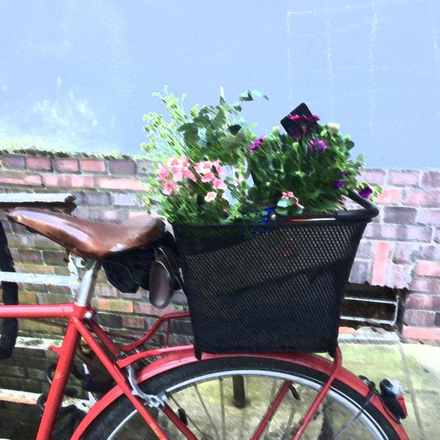Fahrradkorb mit Blumen